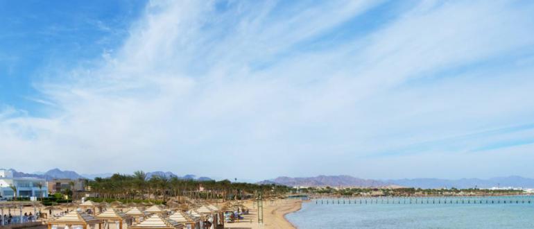 Горящие туры в Египет Amwaj Oyoun Sharm (Ex.Aa Amwaj Hotel Sharm El Shekh)
